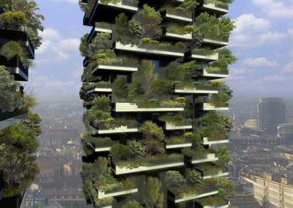Creare un bosco sul terrazzo di casa  Guida Giardino