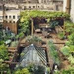 Giardino sul tetto: come realizzare e spunti fotografici
