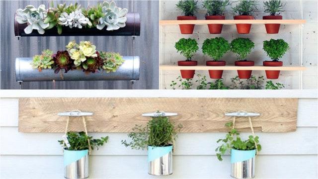 7 idee per realizzare un giardino verticale in maniera for Idee x realizzare un giardino