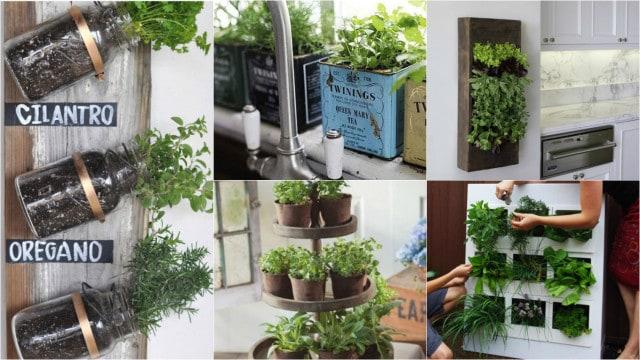 15 modi per coltivare le erbe aromatiche in casa guida - Erbe aromatiche in casa ...