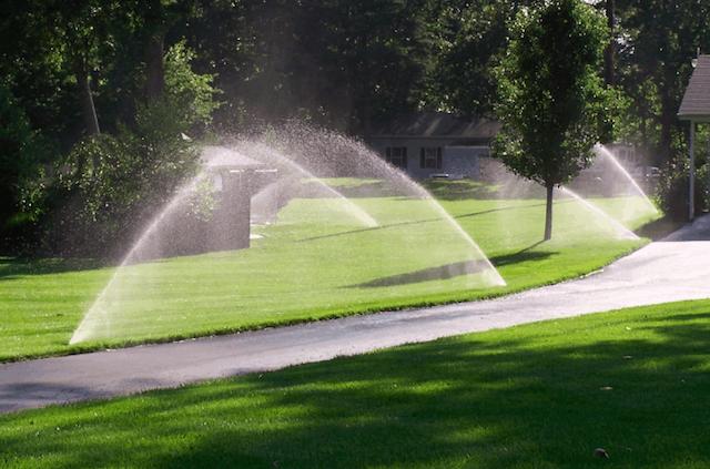 Irrigazione del giardino: manuale, automatica e strumenti necessari