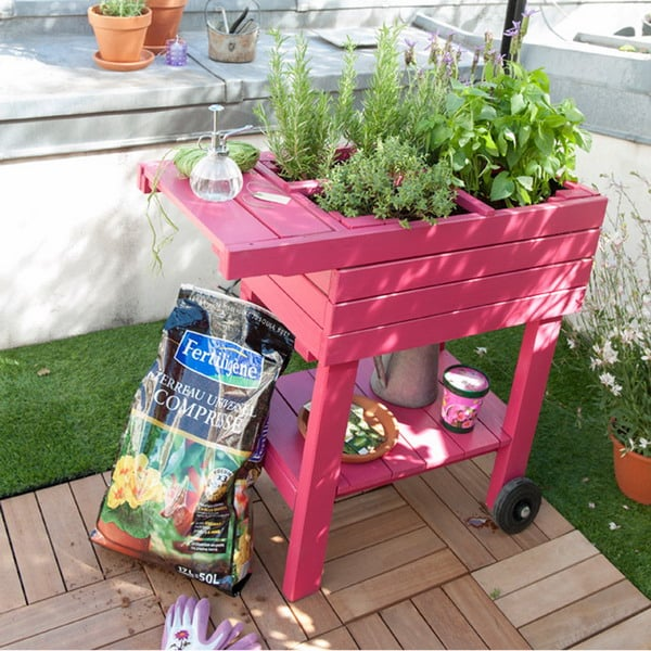 Come portare colore in giardino