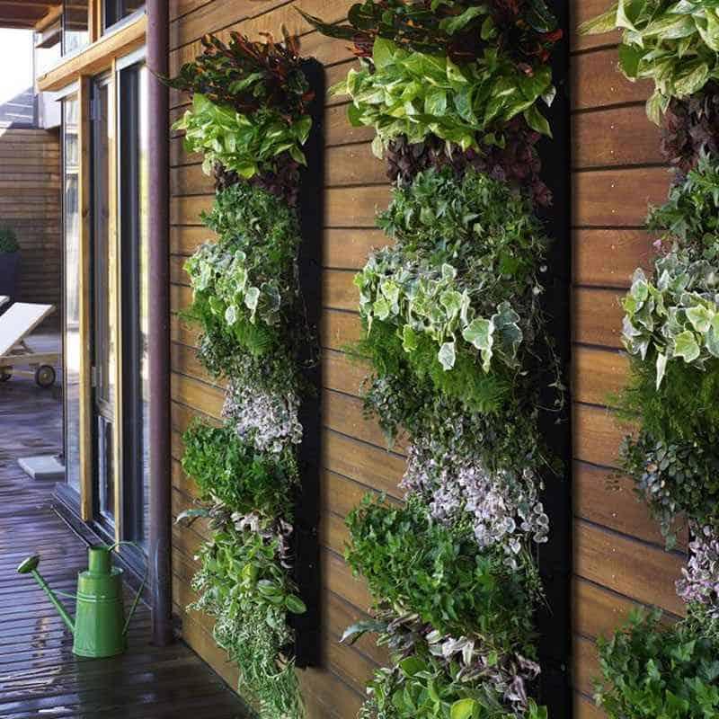 Il giardino verticale per gli spazi ristretti