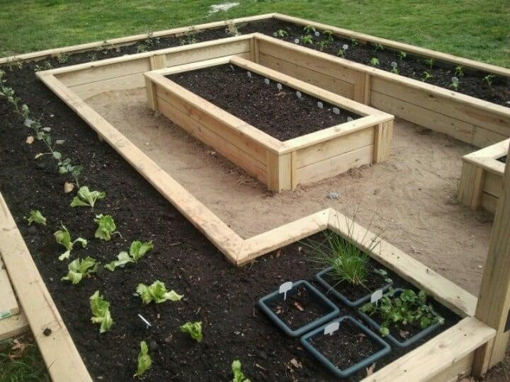 Come realizzare coltivazioni su letti rialzati