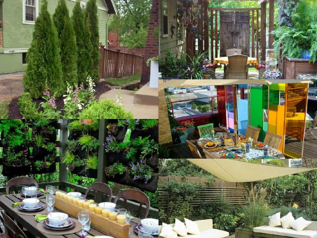 Come creare spazi privati nel giardino