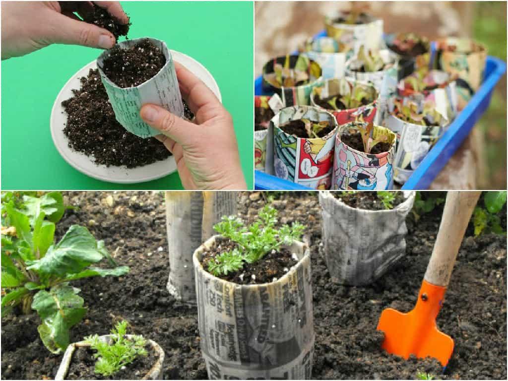 Come realizzare semenzai biodegradabili con la carta