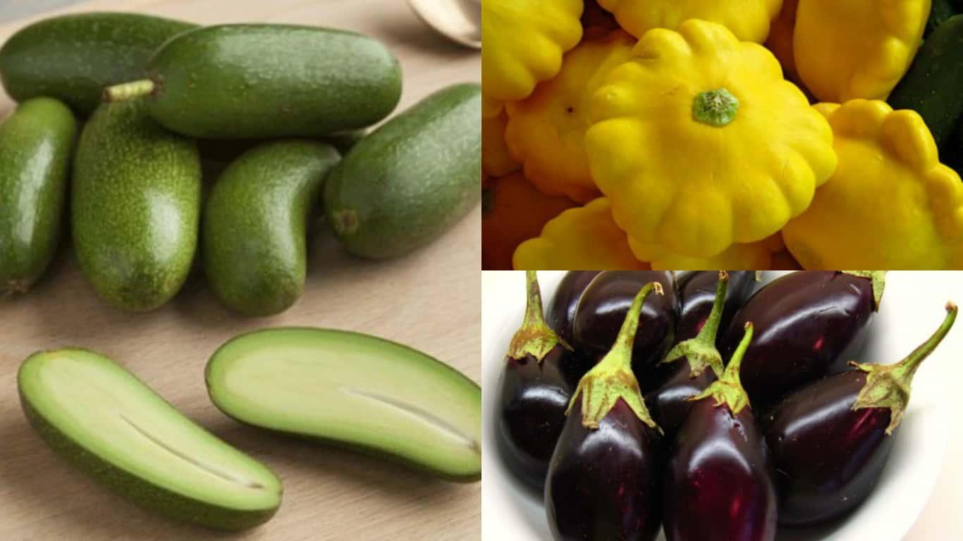 10 ortaggi nani perfetti per la coltivazione in vaso