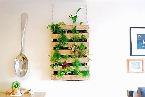Giardini verticali fai da te per la casa