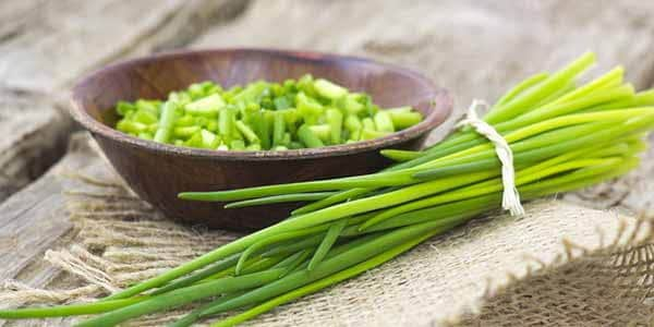 9 erbe aromatiche che puoi coltivare in cucina
