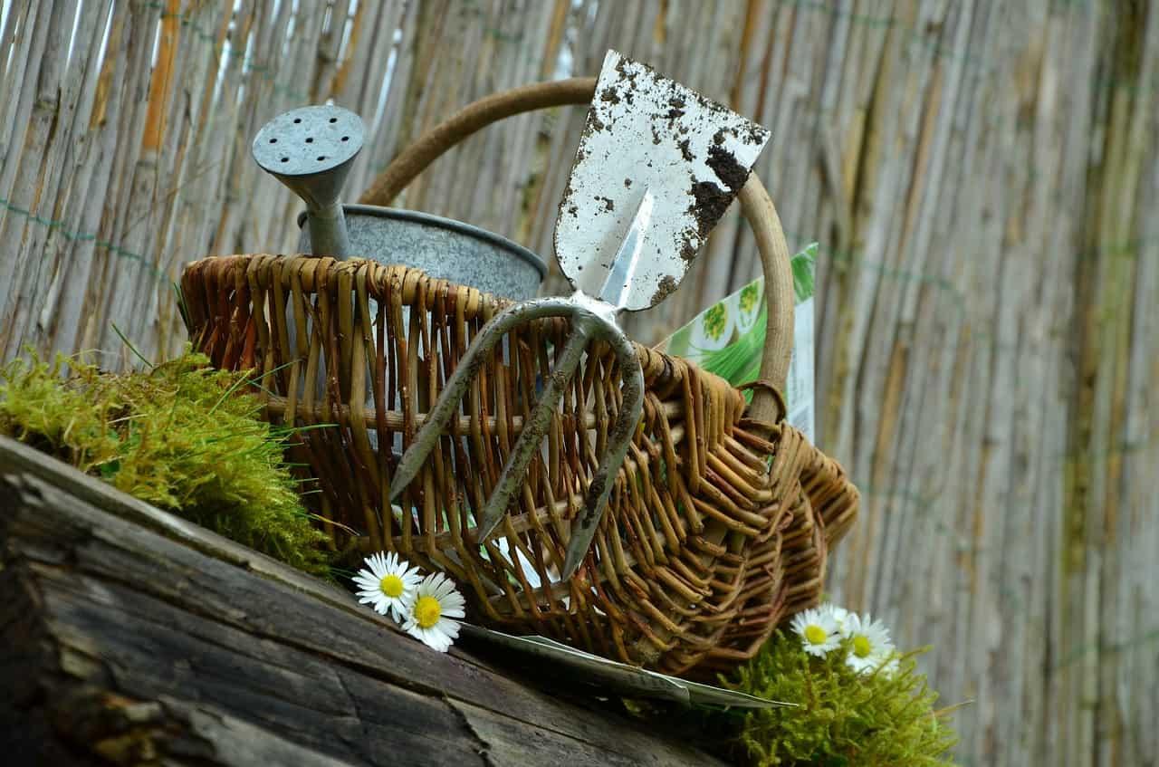 Gli strumenti per coltivare l'orto e il giardino