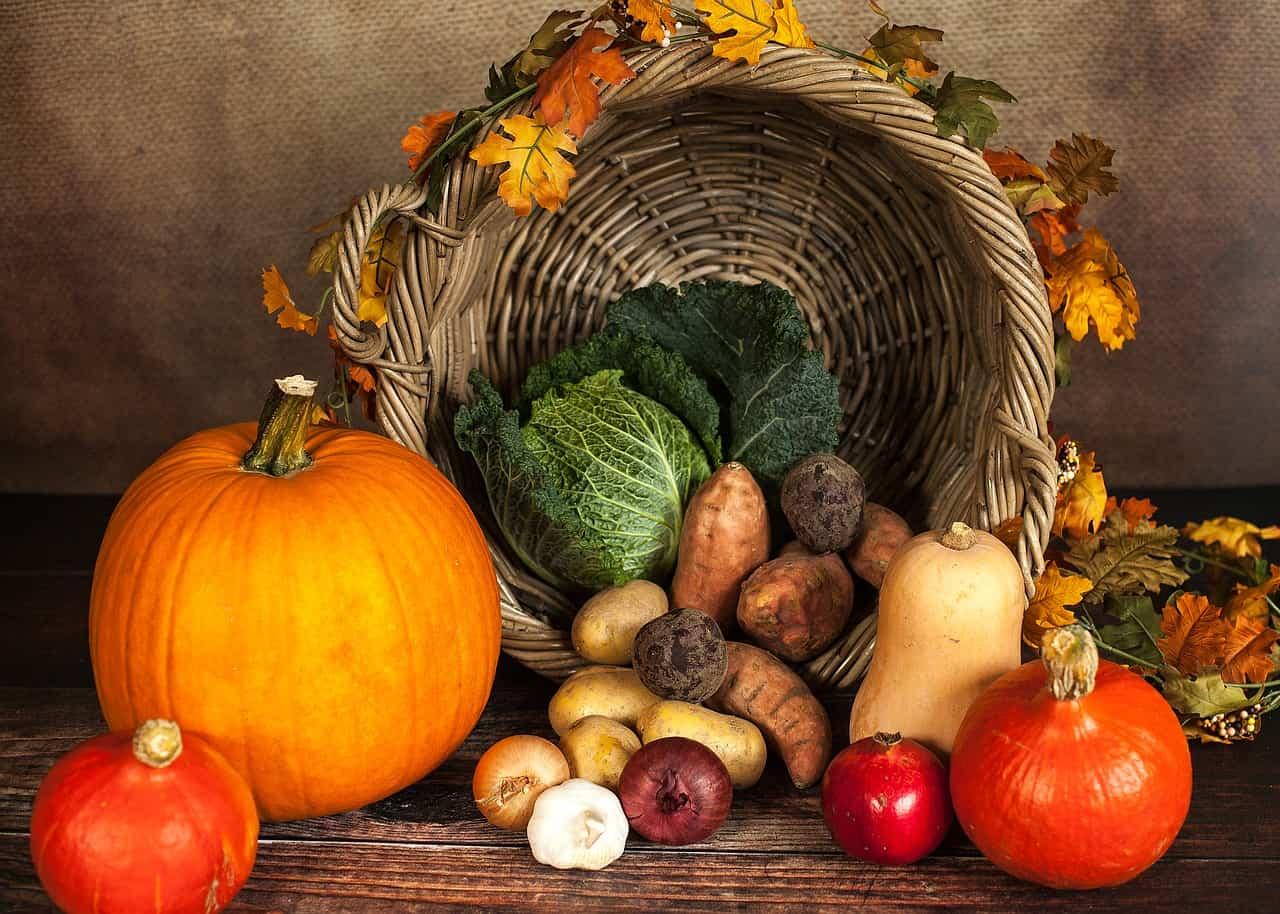 L'orto di ottobre: il calendario delle semine