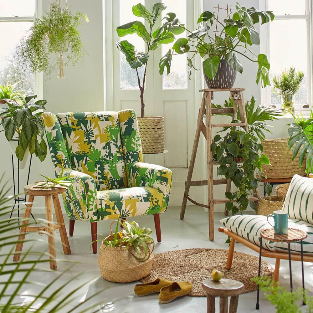 Urban Jungle: il trend che arreda la casa…con le piante!