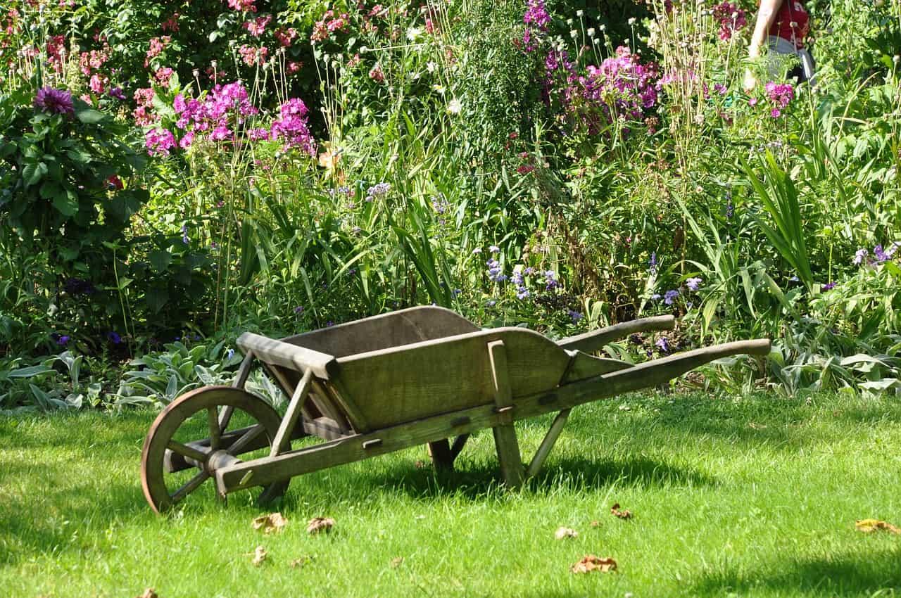 L'orto di aprile: semine, trapianti e lavori