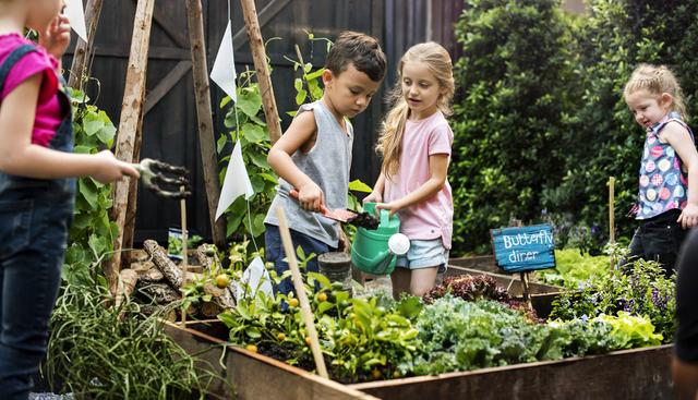 Giardinaggio con i bambini: spunti originali e creativi