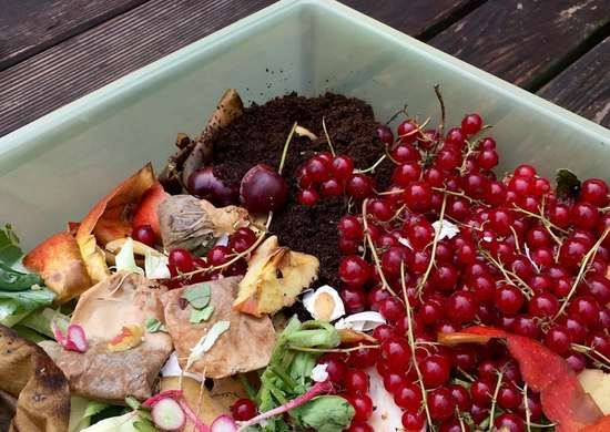 10 ingredienti segreti per il giardino