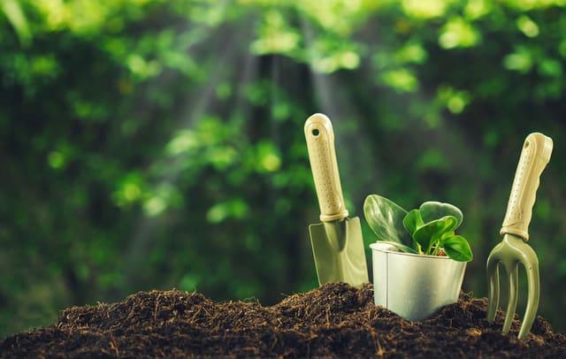 Le più belle idee regalo per appassionati di giardinaggio