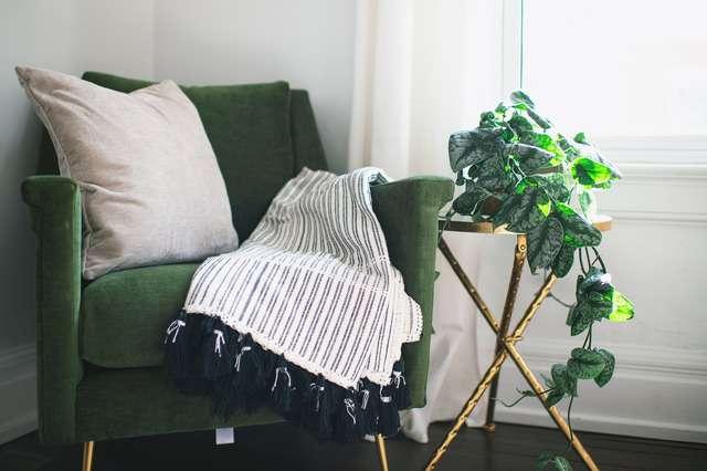 Come preparare le piante d'appartamento all'estate